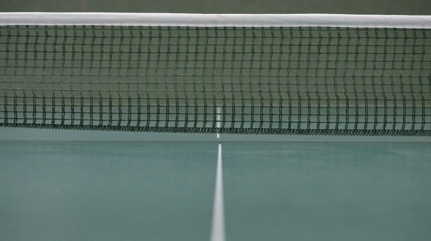 A Net Is One Of The Basic Items Needed To Play Table Tennis