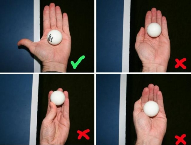correct way to place the ball in your palm table tennis rules