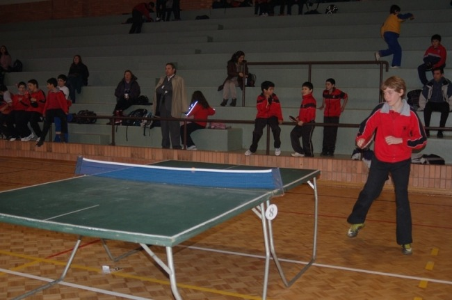 Basic beginners table tennis tables may be a false economy as you will want to replace them as you improve